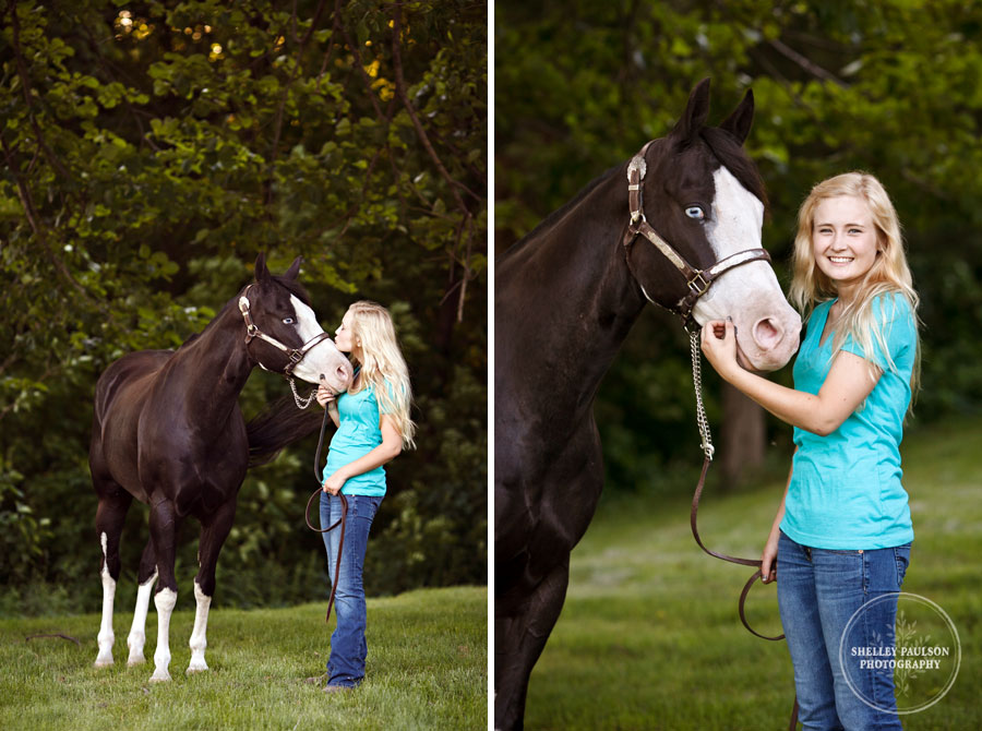 horse_portraits_allie_02.JPG