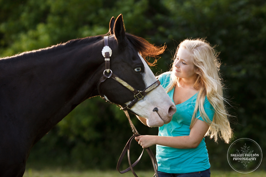 horse_portraits_allie_03.JPG