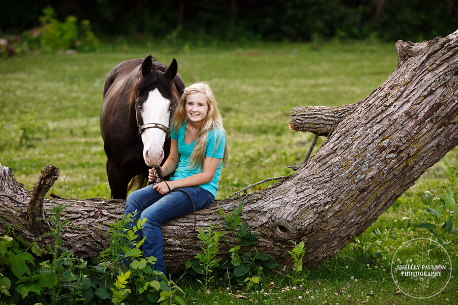 horse_portraits_allie_13.JPG