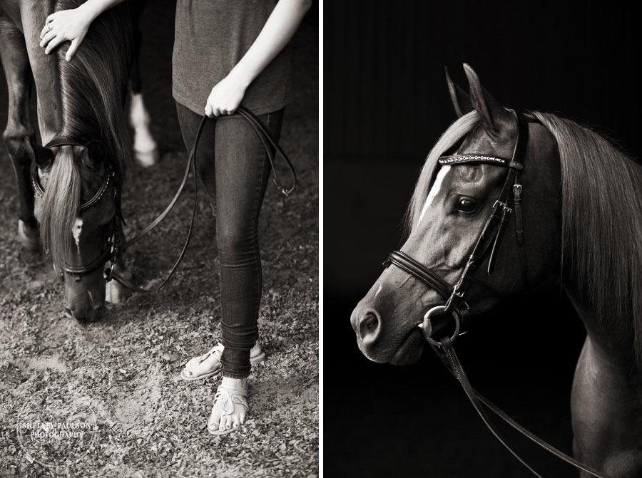 mn_senior_portraits_horse_02.JPG