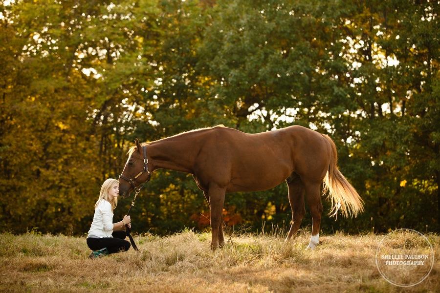 equine-family-portraits-17.JPG