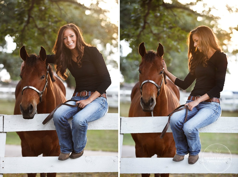 equine_portraits_09.JPG