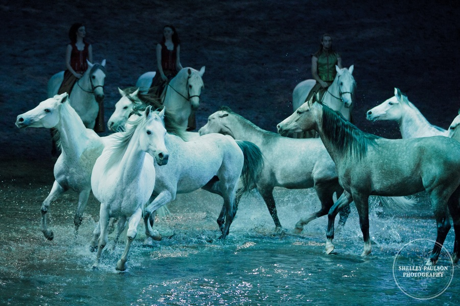 1101_odysseo-atlanta_2012.JPG