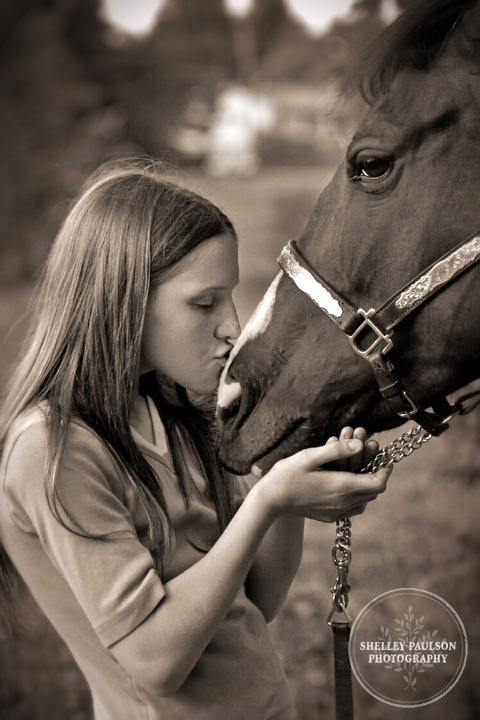 equine-portraits-minnesota-01.JPG