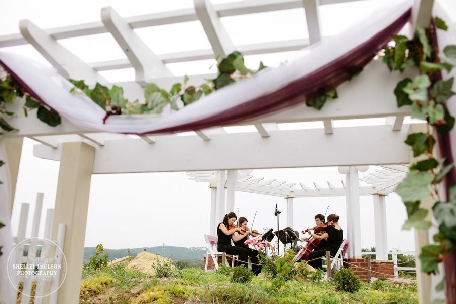 cottage-winery-wisconsin-wedding-24.JPG