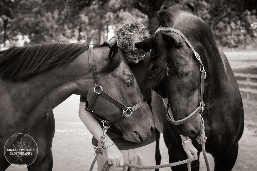 minnesota-horse-photographer-05.JPG