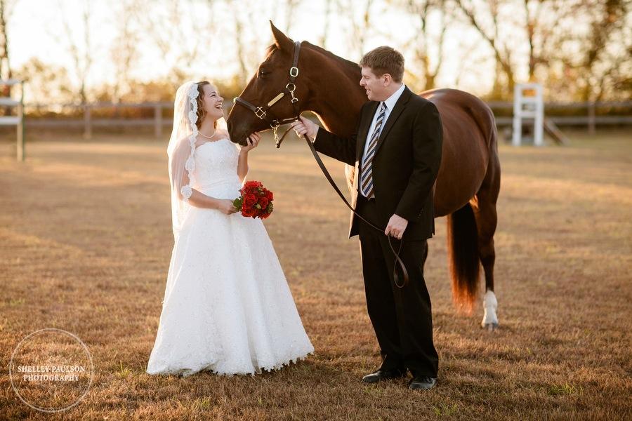 bride-horse-portraits-01.JPG