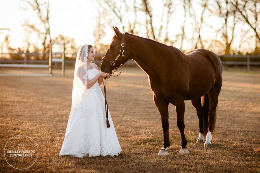 bride-horse-portraits-02.JPG