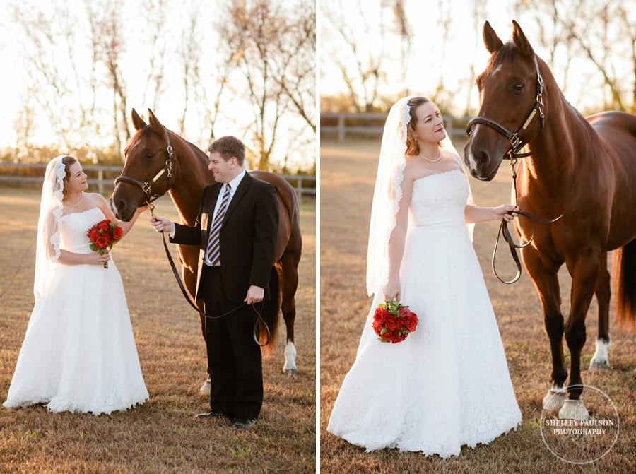bride-horse-portraits-03.JPG
