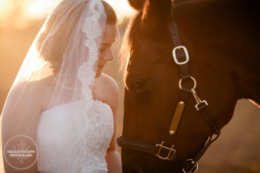 bride-horse-portraits-04.JPG