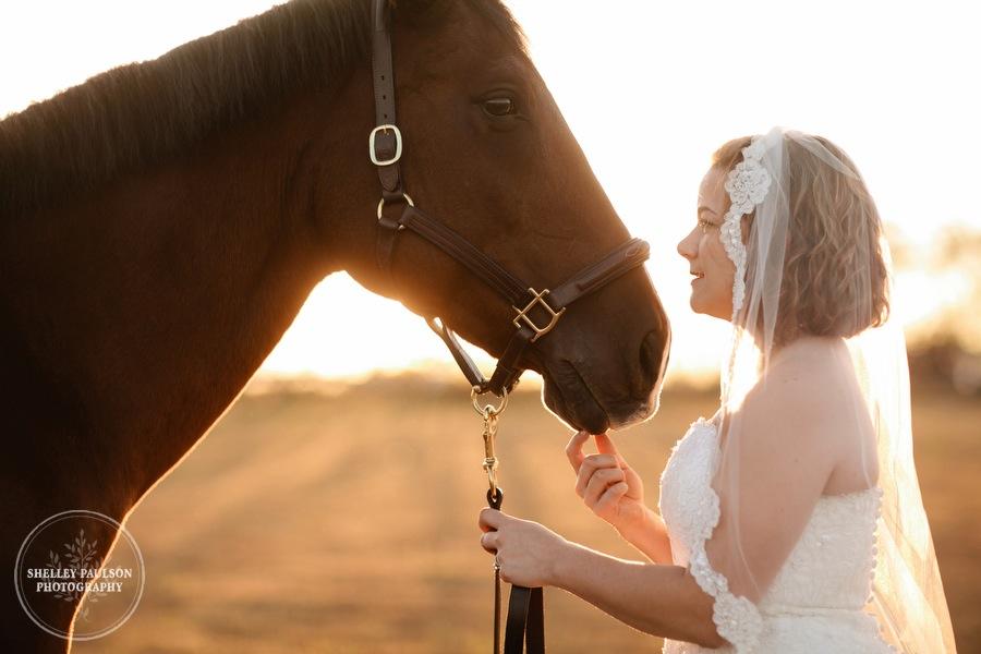 bride-horse-portraits-06.JPG