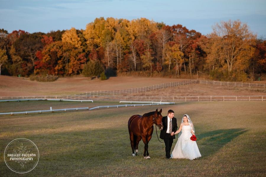 bride-horse-portraits-07.JPG