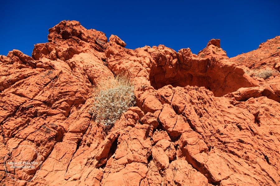 antelope-canyon-photos-22.JPG
