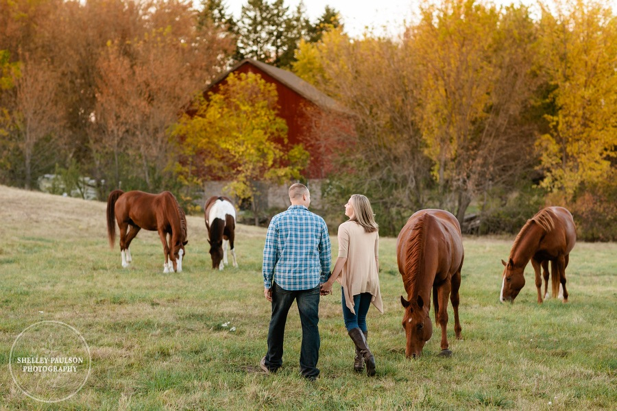 engagement-horses-minnesota-15.JPG