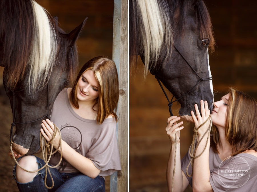 minnesota-equine-photographer-02.JPG