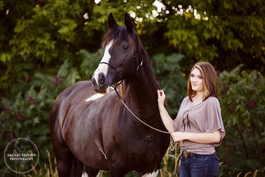 minnesota-equine-photographer-03.JPG