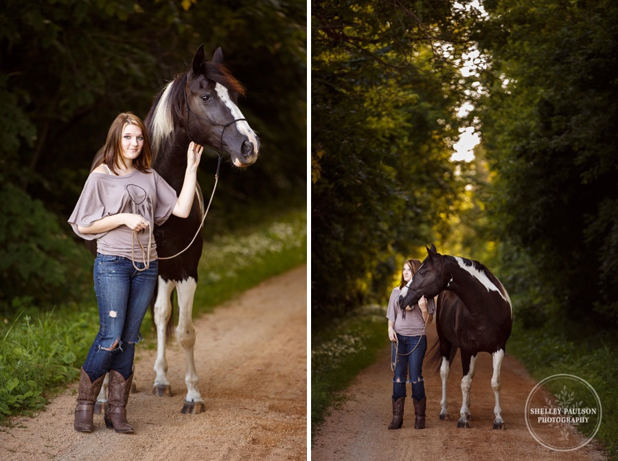 minnesota-equine-photographer-04.JPG