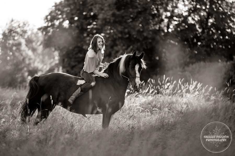 minnesota-equine-photographer-05.JPG