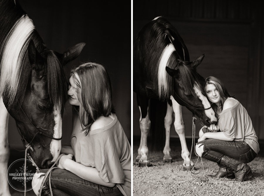 minnesota-equine-photographer-06.JPG