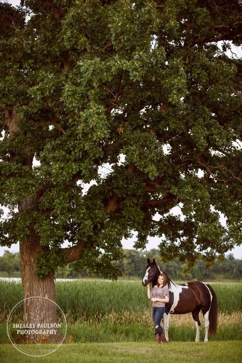 minnesota-equine-photographer-08.JPG