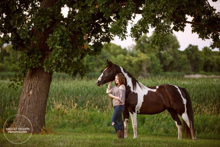 minnesota-equine-photographer-09.JPG