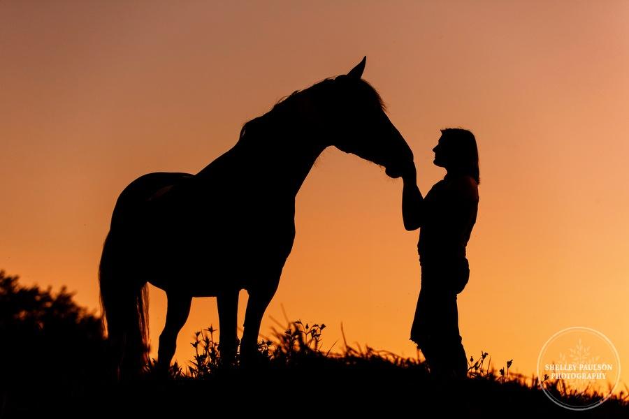 minnesota-equine-photographer-10.JPG