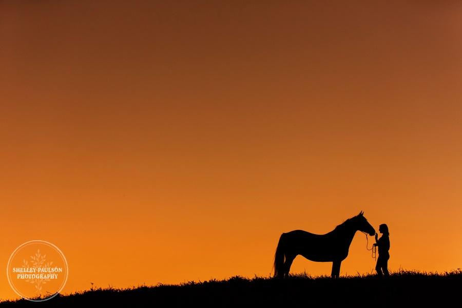 minnesota-equine-photographer-11.JPG