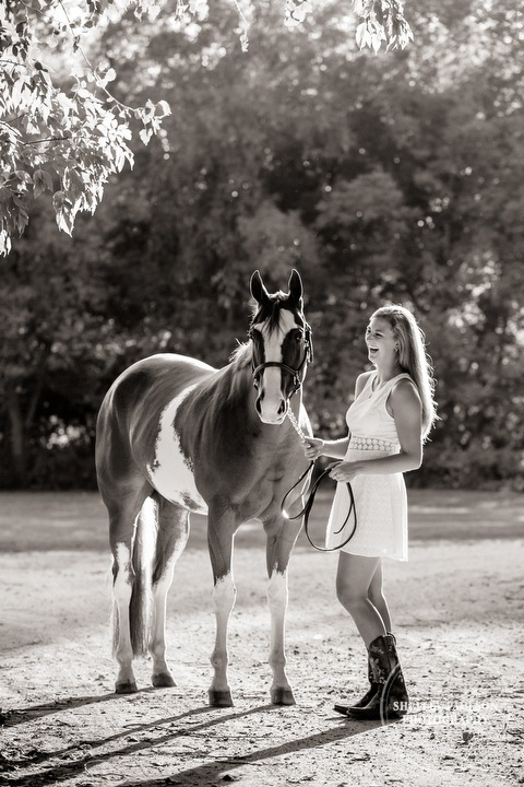 minnesota-equine-photographer-04.JPG