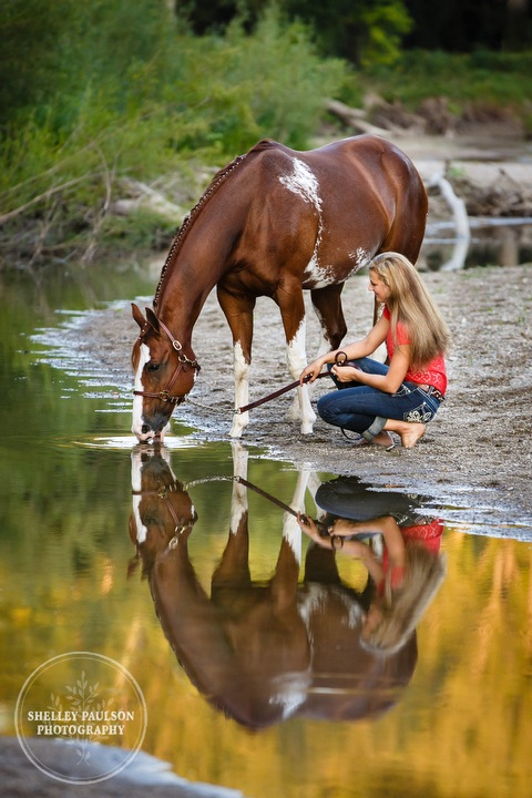 minnesota-equine-photographer-07.JPG