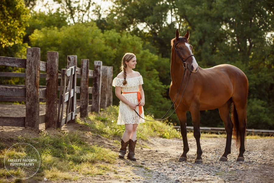 minnesota-equestrian-photographer-07.JPG