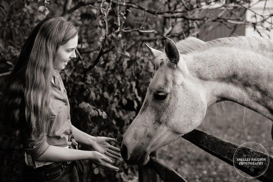 minnesota-equestrian-photographer-11.JPG