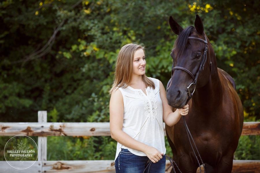 minnesota-horse-photographer-02.JPG