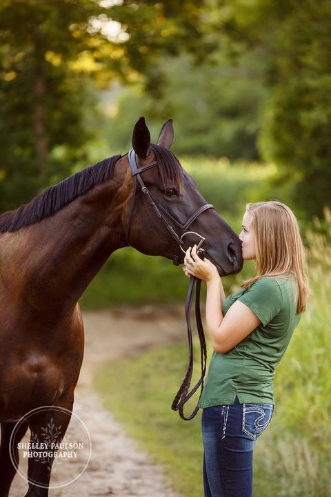 minnesota-horse-photographer-06.JPG