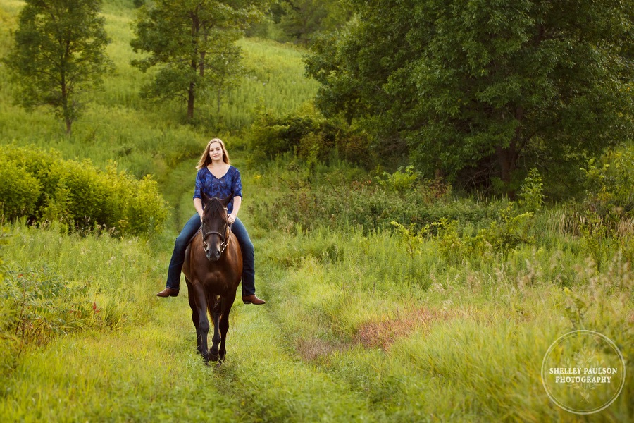 minnesota-horse-photographer-12.JPG