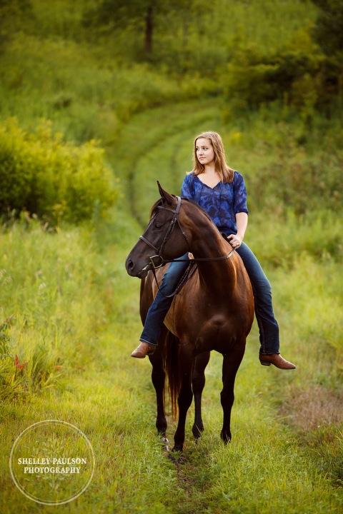 minnesota-horse-photographer-13.JPG