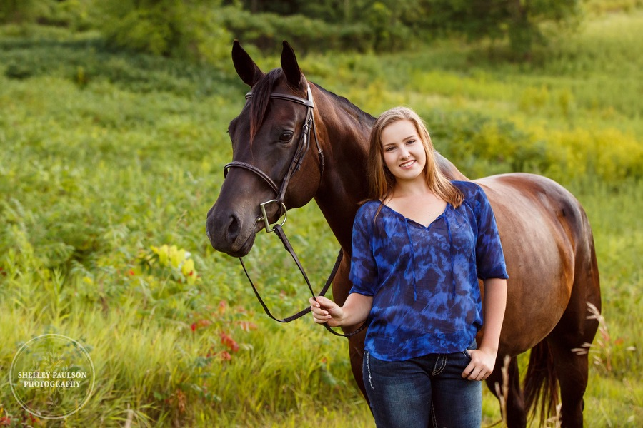 minnesota-horse-photographer-14.JPG