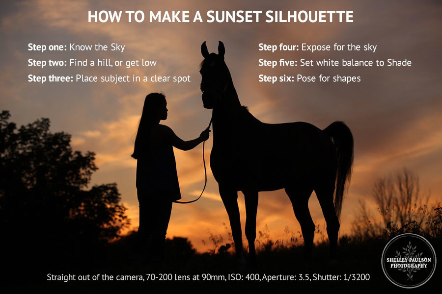 Photo Tip: How to Make a Sunset Silhouette
