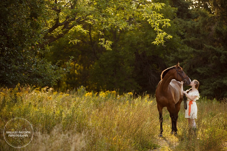 minnesota-equestrian-photographer-01