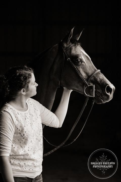 mn-portraits-arabian-horse-09.JPG