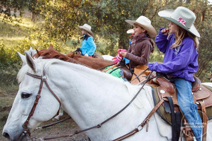 cattledrive24.JPG