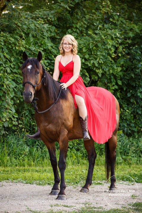 minnesota-senior-equine-02