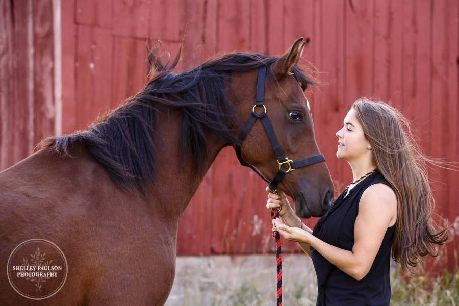 mn-senior-photos-with-horses-02.JPG