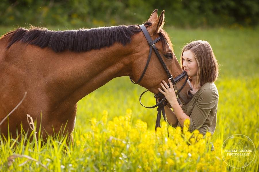 minnesota-equestrian-portraits-03.JPG