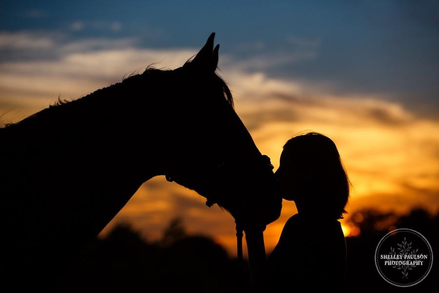 minnesota-equestrian-portraits-15.JPG