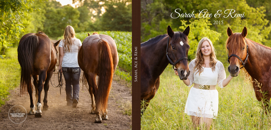 Sarah's Album with her Horses Ace and Remi