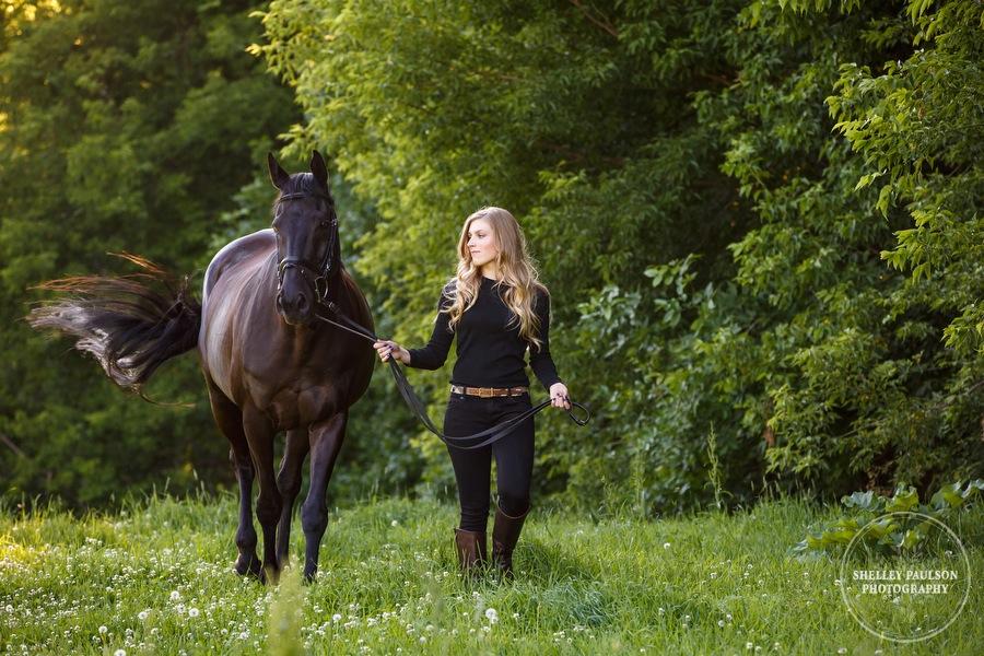 orono-mn-equine-photographer-03.JPG