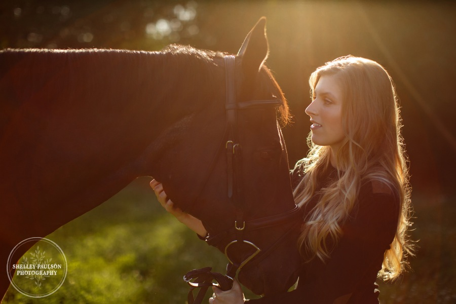 orono-mn-equine-photographer-05.JPG