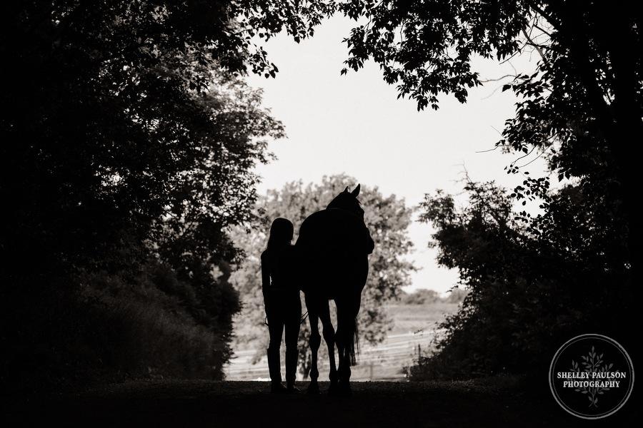 orono-mn-equine-photographer-06.JPG