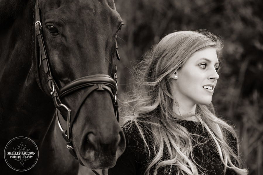orono-mn-equine-photographer-08.JPG