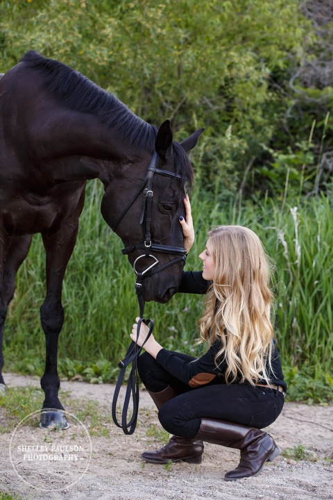 orono-mn-equine-photographer-09.JPG